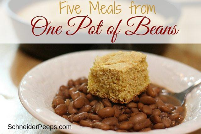 Five Meals