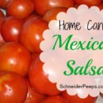 SchneiderPeeps - Home Canned Mexican Salsa