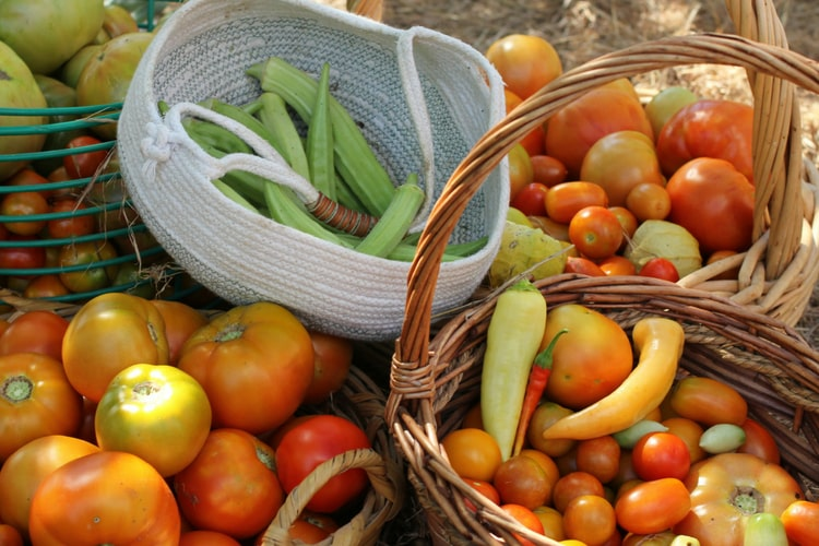 photo of okra in rope basket and tomatoes in baskets
