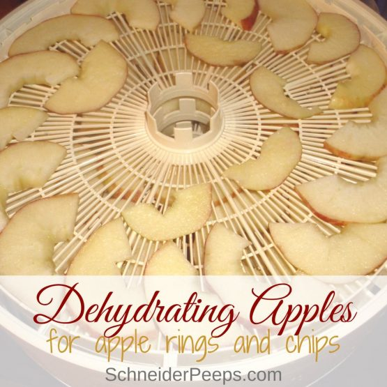 Love dried apples? Dehydrating apples at home will allow you to get the flavor and crispiness you love without spending a fortune. It's super simple. Dehydrated apples make a great snack or can be used in baking.