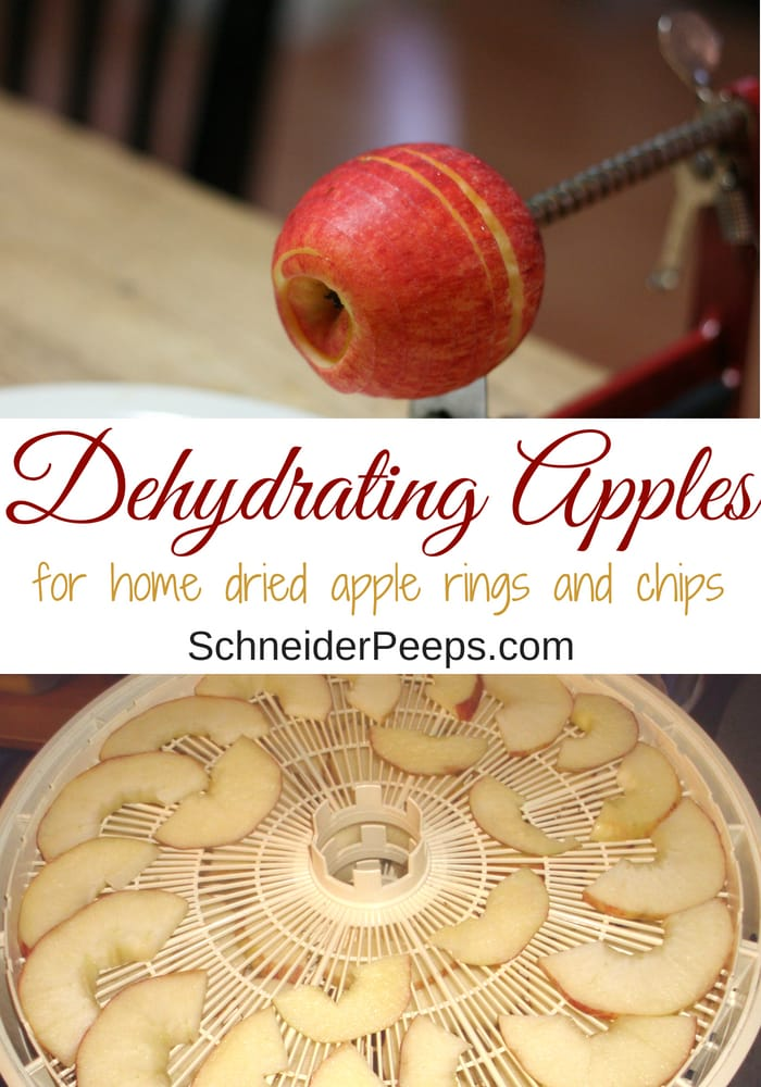 image of dehydrating apples