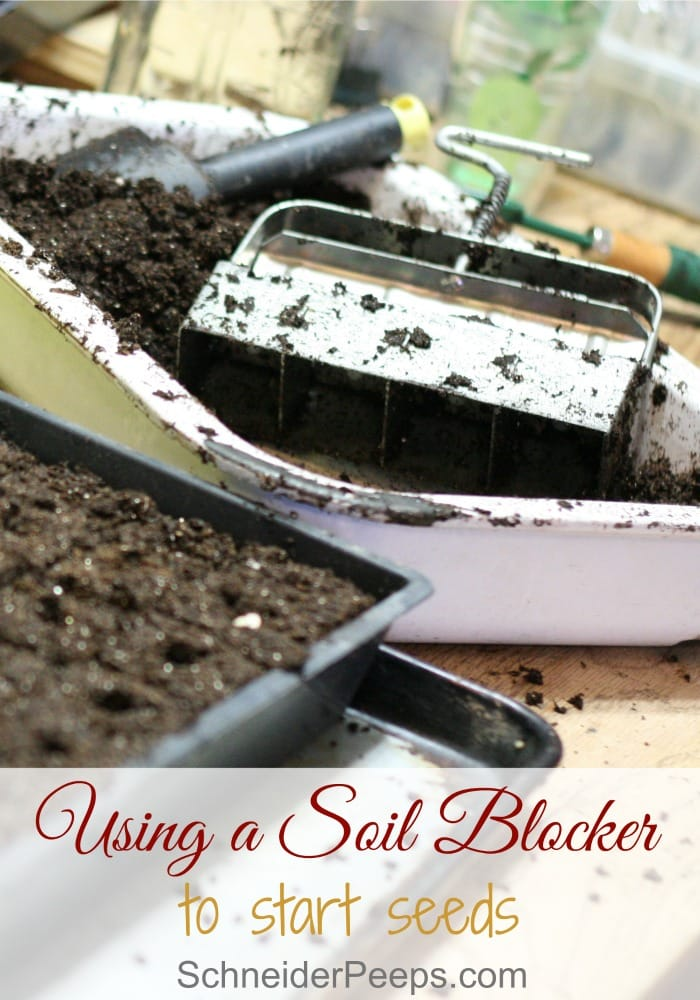 Using a soil block builder is one of the easiest and frugal ways to start a lot of seeds for your garden. All you use is soil, water and the soil block builder. Learn how to use this fun garden tool to maximize your harvest.