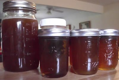 Wild honey harvest