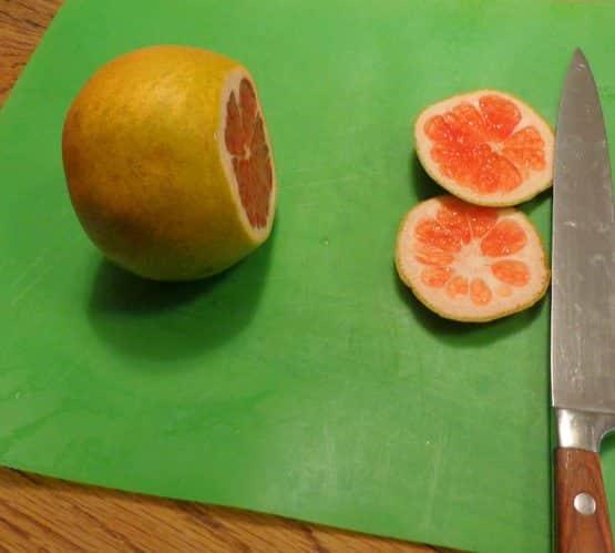 grapefruit tip