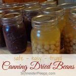 Canning dried beans at home can save you time and money. Learn how to make canned black beans, pinto beans, and other canned dried beans with this tutorial.