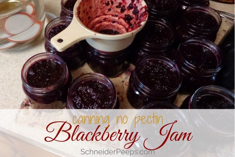 image of canning blackberry jam recipe