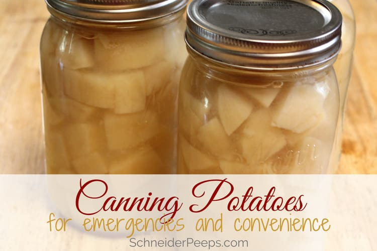 image of canning potatoes