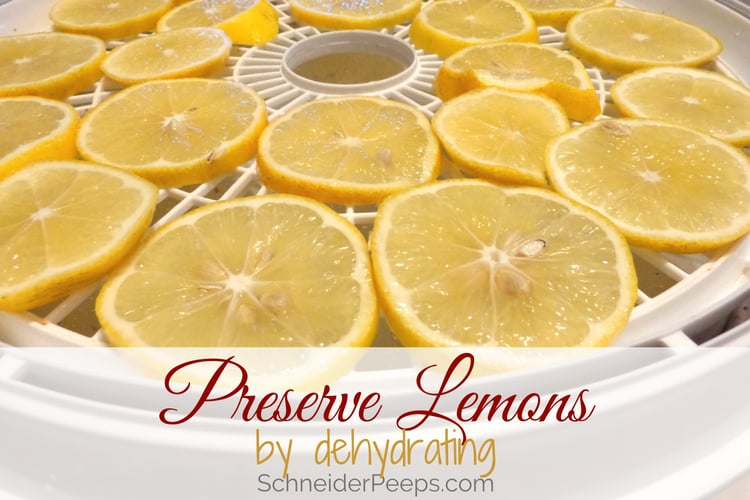 image of lemon slices in dehydrator for drying