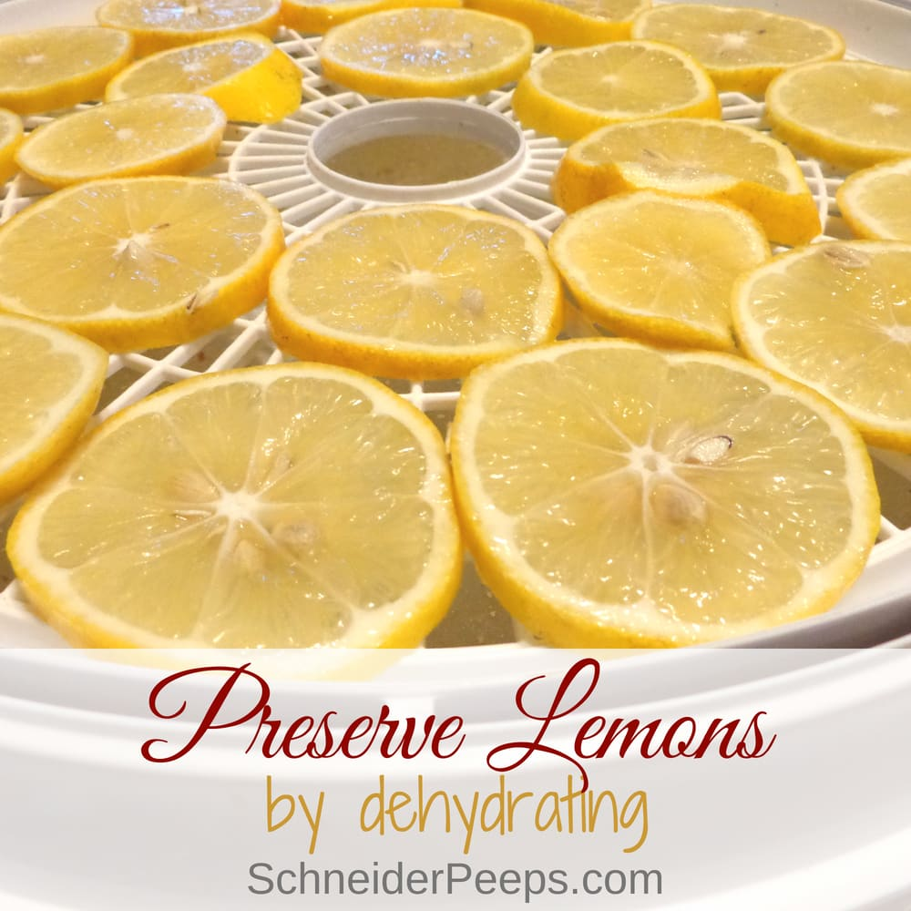Dehydrating lemons is a great way to preserve lemons for using through the year. Learn to make dried lemon slices, zest, lemon salt and lemon sugar.