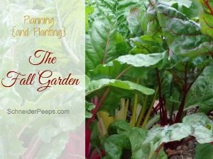 planning and planting a fall garden