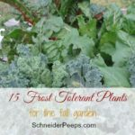 15 Frost Tolerant Vegetables to Grow in the Fall Garden