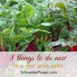8 Things You Can Do Now to Have a Great Spring Garden