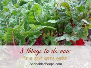 SchneiderPeeps - here are eight easy things to do now that will help you have a great spring garden.
