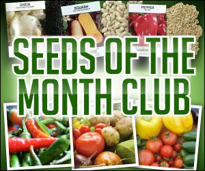 seeds of month