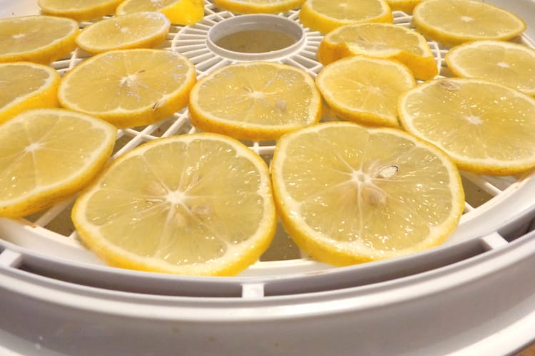 image of dried lemon slices for dehydrating