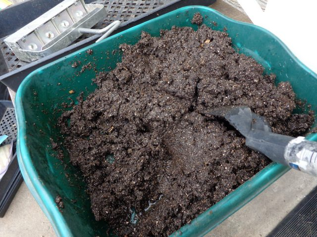 image of soil for starting seeds