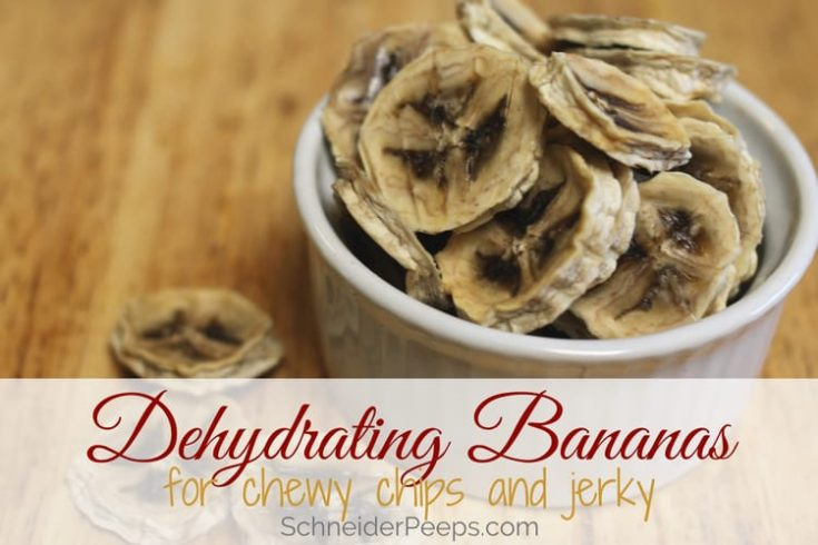 How to Dehydrate Bananas to Make Chewy Banana Chips or Banana Jerky