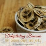 Dehydrating bananas make an easy and tasty snack. Learn how to make dehydrated banana chips and banana jerky that's chewy and better than store bought banana chips.