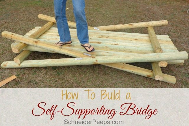 SchneiderPeeps - Self Supporting Bridge