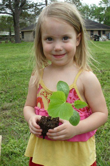 gardening with preschooler