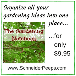 The Gardening Notebook (scrappy)