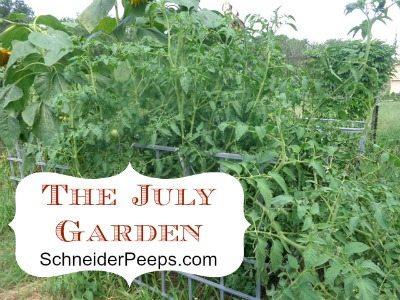 SchneiderPeeps - The July Garden