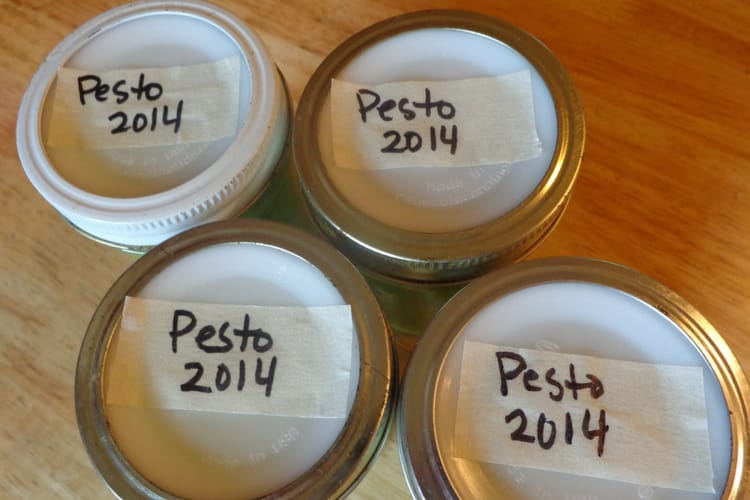 image of basil pesto in jars for freezing