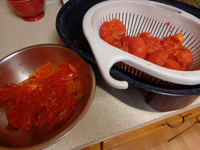 image of tomatoes and bowl of tomato peels