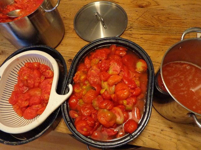 image of tomato preserving process