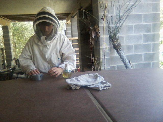 Gabriel catching a bee swarm
