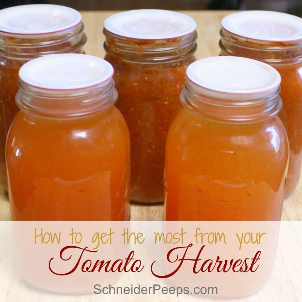 Preserving tomatoes is like preserving summer! Learn how to get the most out of your tomato harvest by using up every bit of the tomato, including the extra juice and peels.