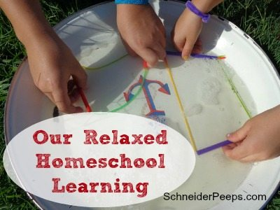 SchneiderPeeps - Our relaxed homeschool learning