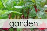Click for Garden Tips