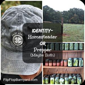Identity-Homesteader-or-Prepper