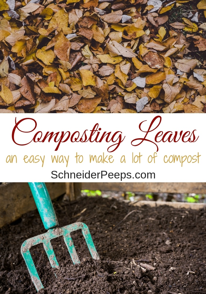 image of leaves and compost with pitch fork