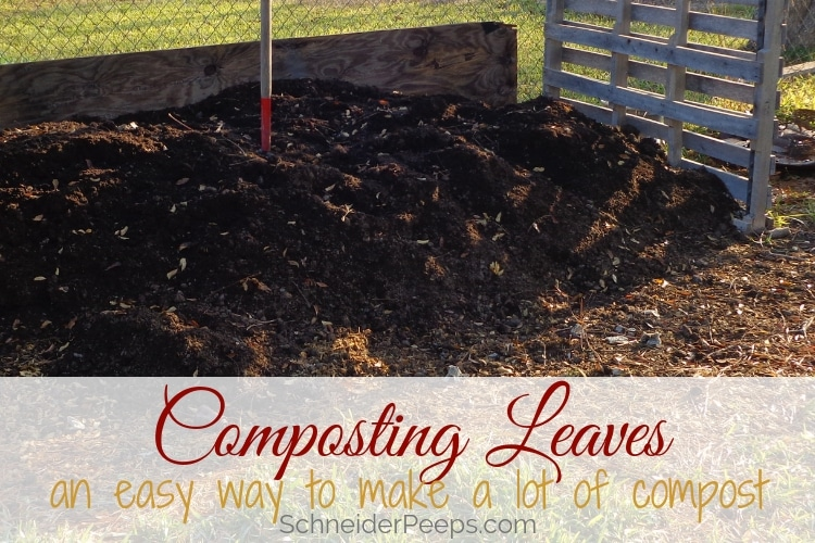 image of compost pile with pitch fork