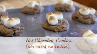Hot Chocolate Cookies - a family favorite