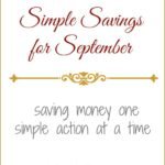 SchneiderPeeps - Simple Savings for September. These are the simple things we did in September to save money. The budget is won or lost one simple action at a time.