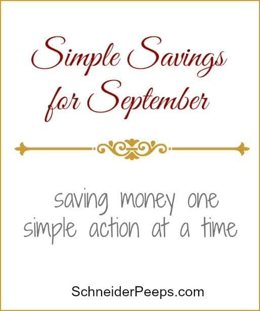 SchneiderPeeps - Simple Savings for September.  In September we found many simple ways to save money. The budget is won or lost one simple action at a time.