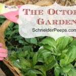 SchneiderPeeps - The October Garden