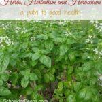 Herbs, Herbalism and Herbariums