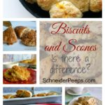 SchneiderPeeps - There is a difference between biscuits and scones. Find out what it is and some amazing recipes of each.