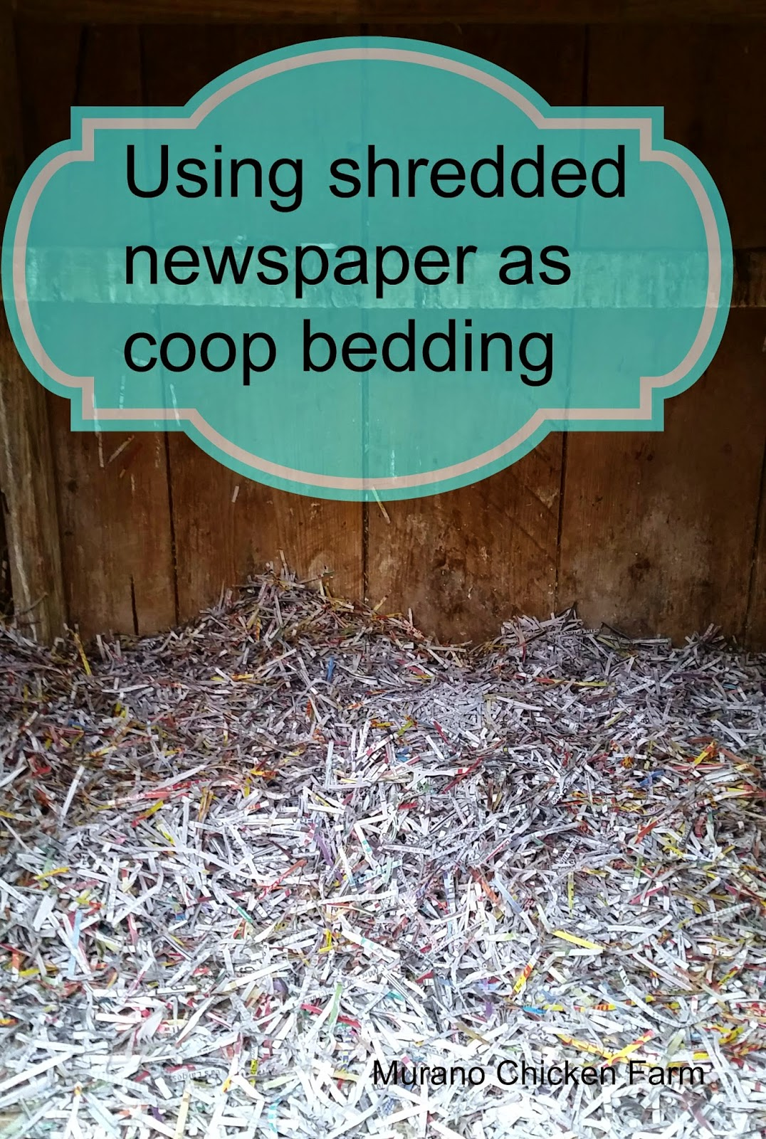 newspaper coop bedding