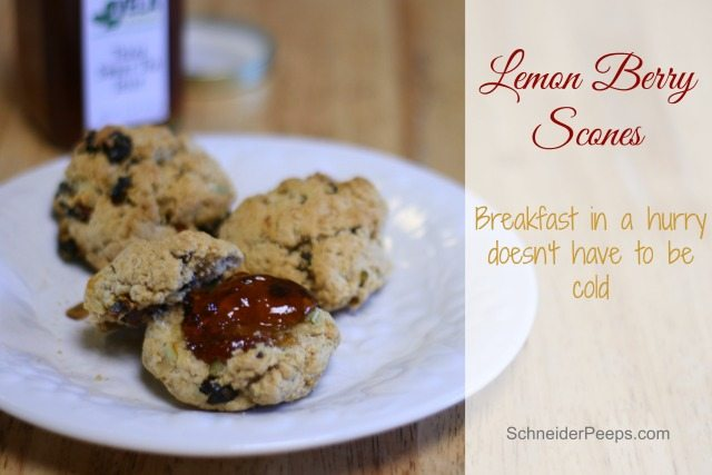 Breakfast in a hurry doesn't have to mean cold cereal or pop tarts. In under 30 minutes you can have a hot breakfast of lemon berry scones for your family.
