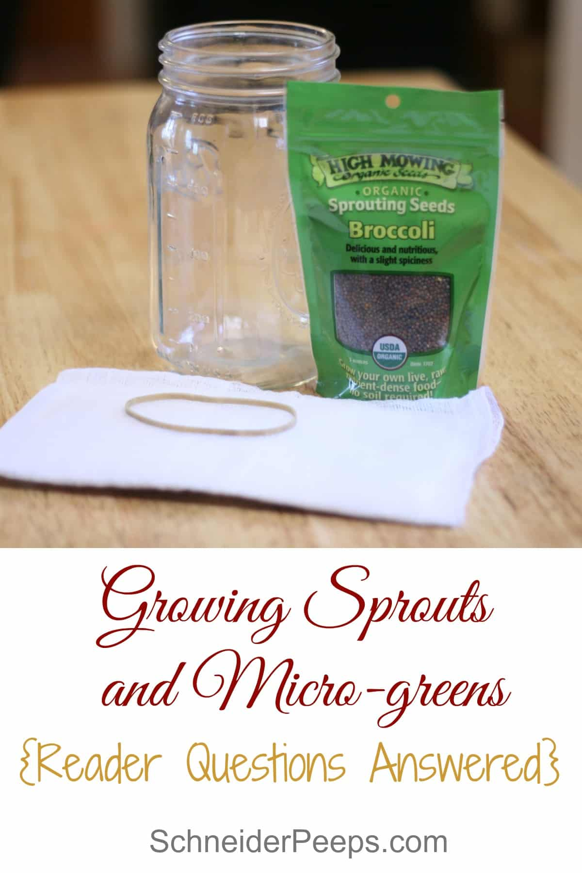 SchneiderPeeps - Growing sprouts and microgreens at home is a great way to get fresh greens all year long. In this article we answer our reader's most popular questions.