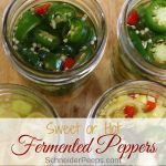 Skip the vinegar and pickle peppers the old fashioned way by fermenting them. Fermented peppers give you all the storage benefits of pickled peppers without the vinegar taste. Make fermented jalapenos or fermented sweet banana peppers, the recipe and process is the same.