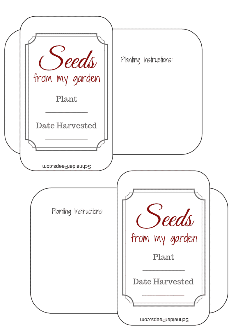 It's just a graphic of Current Printable Seed Packets