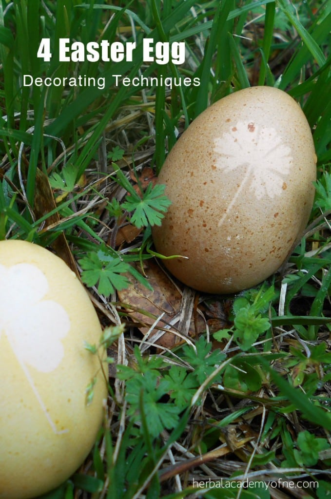 4-Easter-Egg-Decorating-Techniques-Herbal-Academy-679x1024