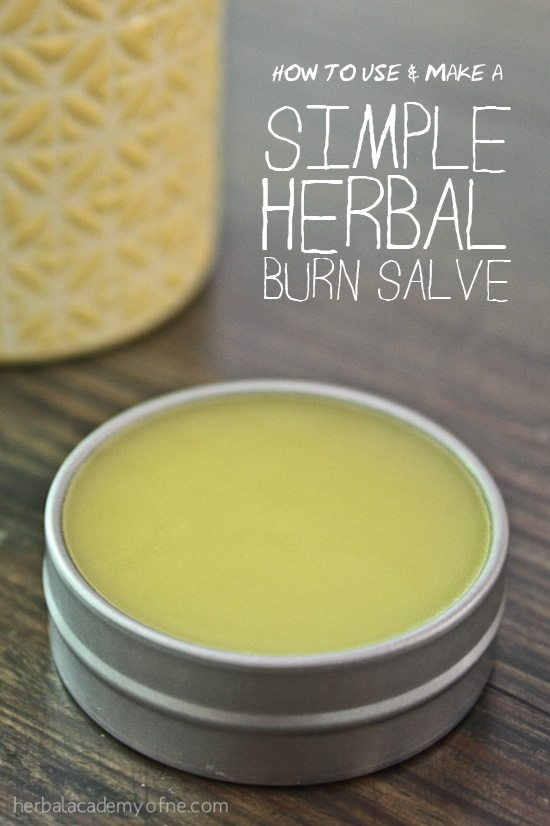 How-to-use-and-make-a-Herbal-Burn-Salve-Herbal-Academy-of-New-England-
