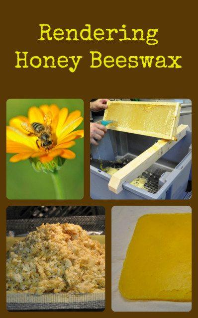 Renderng-Honey-Beeswax-398x640